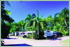 Tropical Hibiscus Caravan Park - Accommodation Ballina