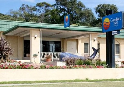 Comfort Inn Albany - Accommodation Ballina