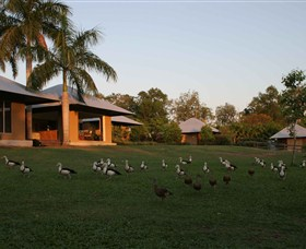 Feathers Sanctuary - Accommodation Ballina