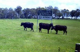 Cluan Homestead - The Managers Residence - Accommodation Ballina
