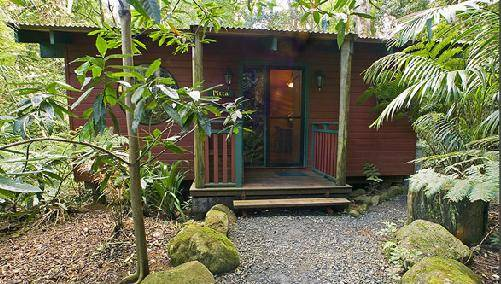 Springbrook Lyrebird Retreat - Accommodation Ballina