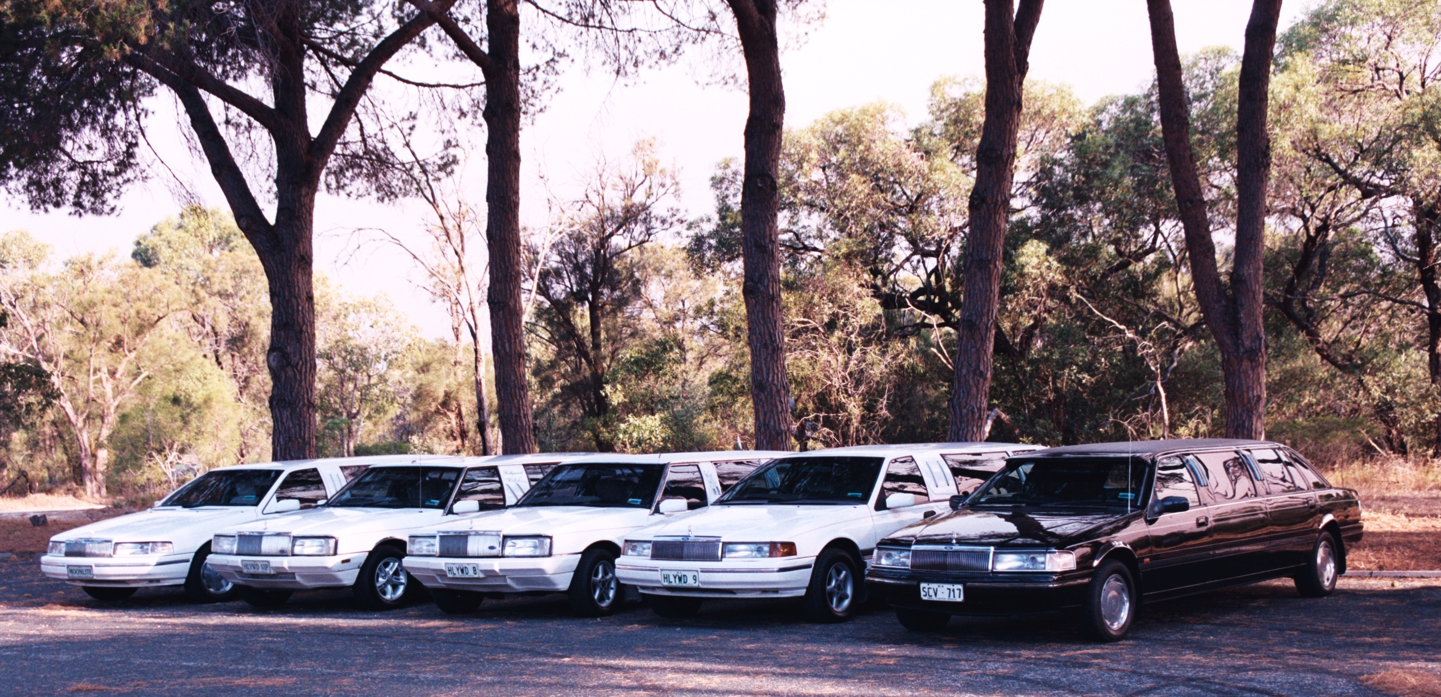 Hollywood VIP Limousines - Accommodation Ballina