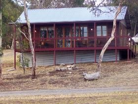 Ivybrook Vineyard Cottage - Accommodation Ballina