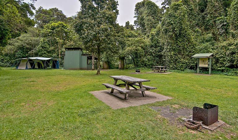 Forest Tops campground - Accommodation Ballina