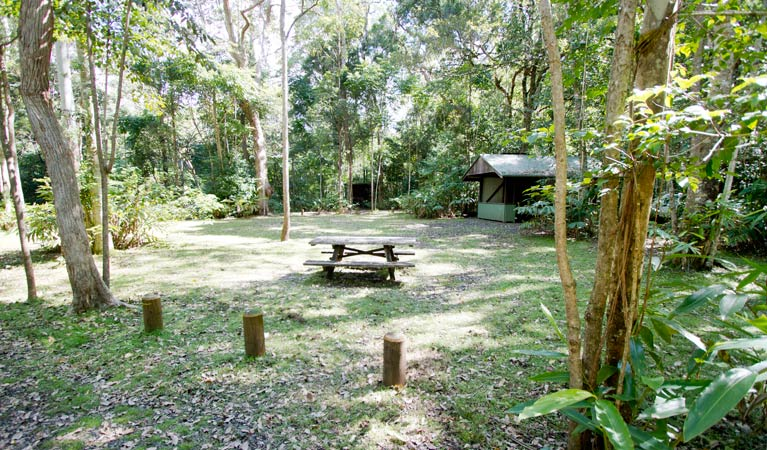 Iron Pot Creek campground - Accommodation Ballina