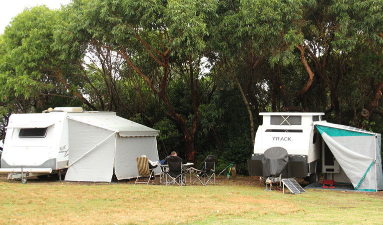 Pretty Beach campground - Murramarang National Park - Accommodation Ballina