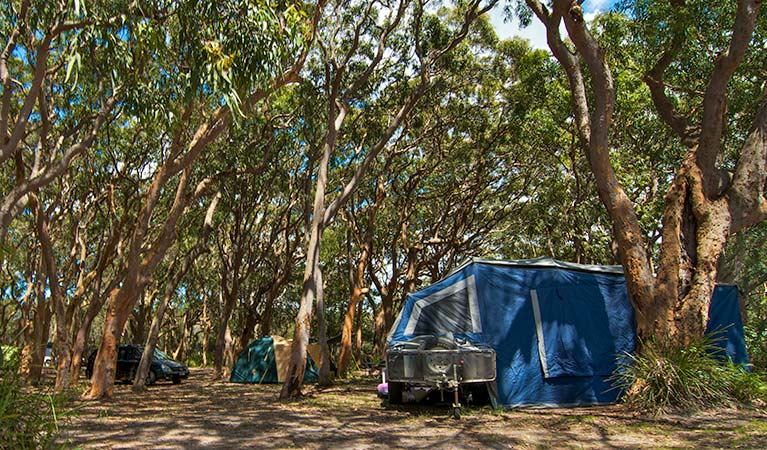 Stewart and Lloyds campground - Accommodation Ballina