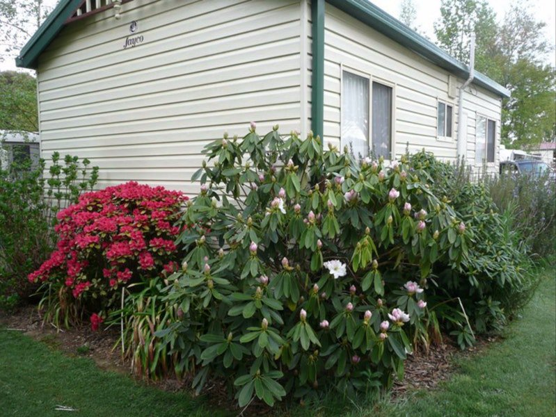 Jenolan Caravan Park - Accommodation Ballina