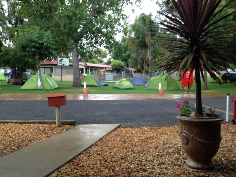 Young Caravan Tourist Park - Accommodation Ballina