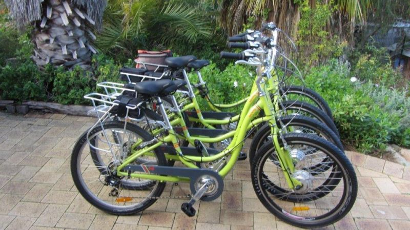 Paul's Eco E Bike Tours - Accommodation Ballina