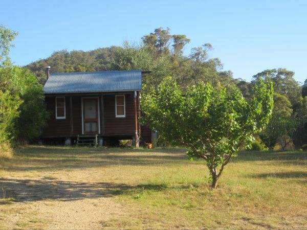 Peach Tree Cabin - Accommodation Ballina