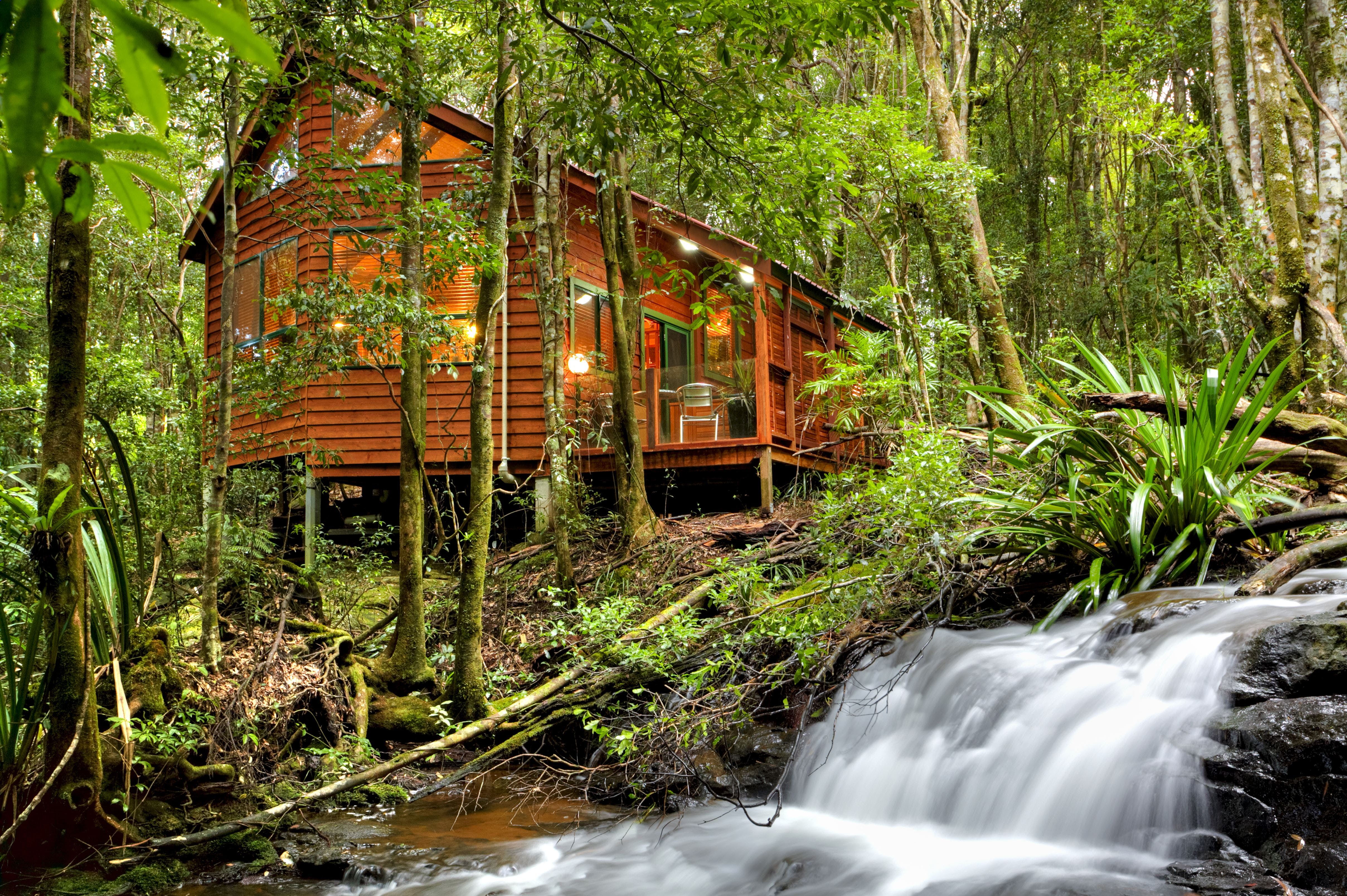 The Mouses House - Rainforest Retreat - Accommodation Ballina