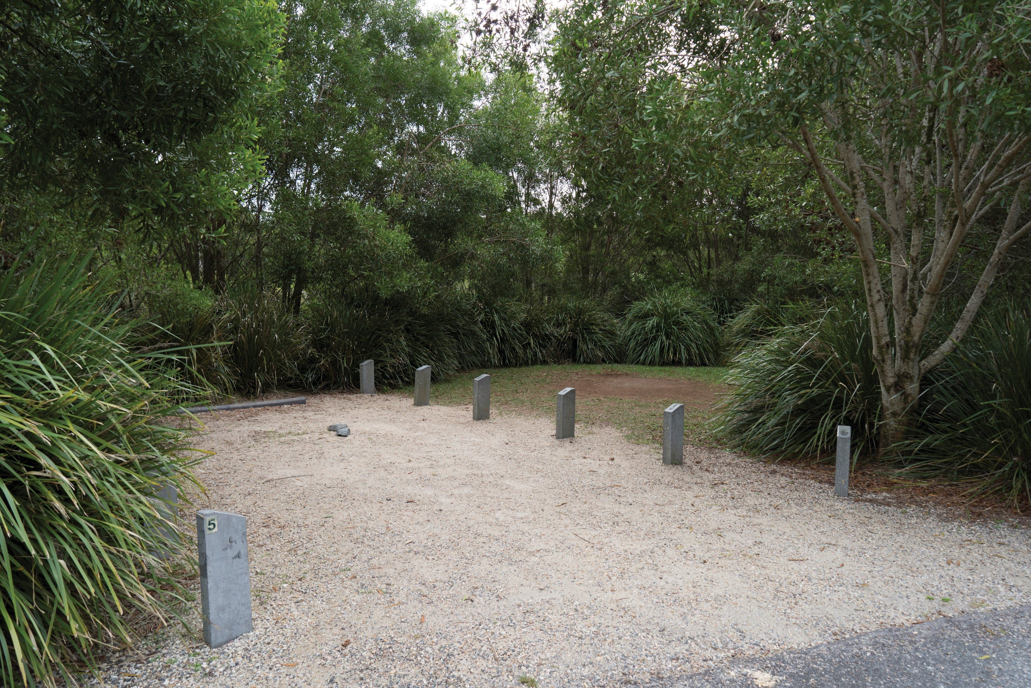 Springbrook National Park camping - Accommodation Ballina