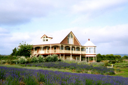 Serendipity Lavender Farm - Accommodation Ballina