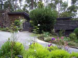 Sunway Farm B and B and Tours - Accommodation Ballina