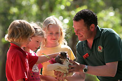Cleland Wildlife Park - Accommodation Ballina