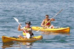 Manly Kayaks - Accommodation Ballina