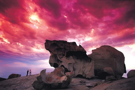Kangaroo Island Adventure Tour 2 day/1 night - Accommodation Ballina