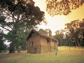 Heysen - The Cedars - Accommodation Ballina