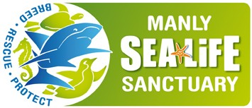 Manly SEA LIFE Sanctuary - Accommodation Ballina