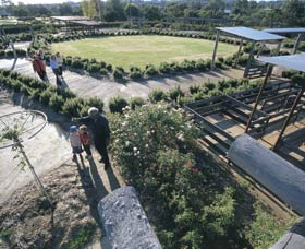Kojonup Rose Maze - Accommodation Ballina