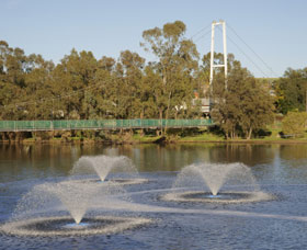 Suspension Bridge - Accommodation Ballina