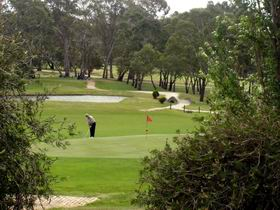 Mount Barker-Hahndorf Golf Club - Accommodation Ballina
