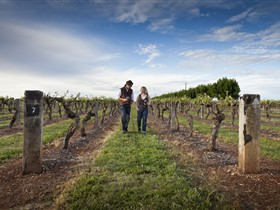 Coonawarra Wineries Walking Trail - Accommodation Ballina