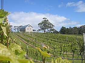 Bruny Island Premium Wines Bar and Grill - Accommodation Ballina
