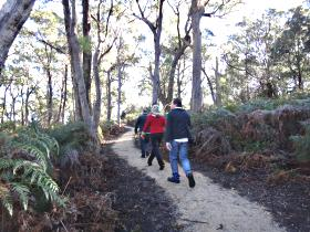 Bridport Walking Track - Accommodation Ballina