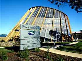 Forest EcoCentre - Accommodation Ballina