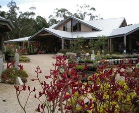 Kuranga Native Nursery and Paperbark Cafe - Accommodation Ballina