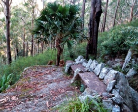 Wodi Wodi Walking Track - Accommodation Ballina