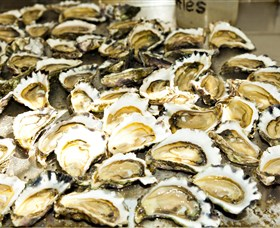 Wheelers Oysters - Accommodation Ballina