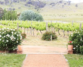 Brindabella Hills Winery - Accommodation Ballina