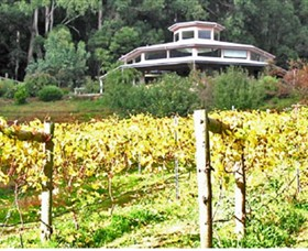 Peveril Vineyard/Beechy Berries - Accommodation Ballina