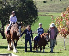 Bathurst Farm Experience - Accommodation Ballina