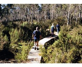 Hume and Hovell Walking Track - Henry Angel Trackhead - Accommodation Ballina