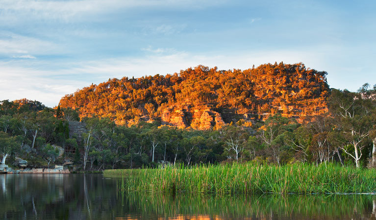 Wollemi National Park - Accommodation Ballina