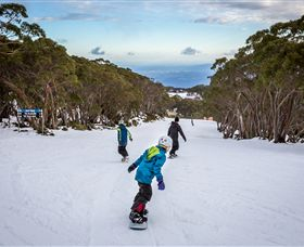 Mt Baw Baw Alpine Resort - Accommodation Ballina