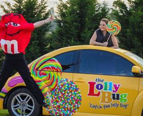 The Lolly Bug - Accommodation Ballina