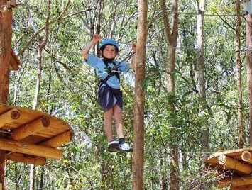 TreeTops Newcastle - Accommodation Ballina