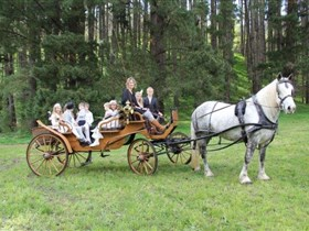 Classic Carriage Drives - Accommodation Ballina