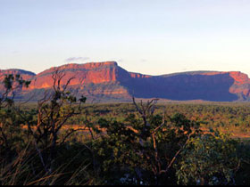 Blackdown Tableland National Park - Accommodation Ballina