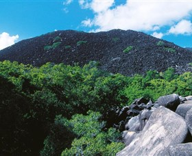 Black Mountain Kalkajaka National Park - Accommodation Ballina