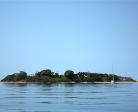 Hope Islands National Park - Accommodation Ballina