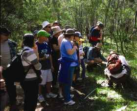 Warrumbungle National Park Discovery Program
