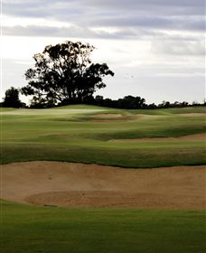 Black Bull Golf Club - Accommodation Ballina
