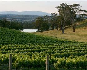 Granite Hills Winery - Accommodation Ballina