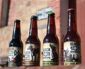 Black Dog Brewery - Accommodation Ballina